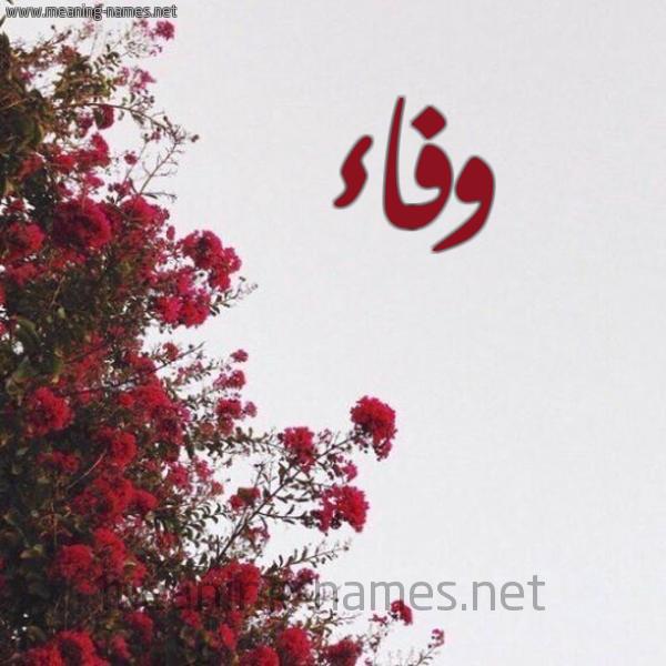 صورة اسم وفاء Wafaa شكل 18 صوره الورد الأحمر للإسم بخط رقعة