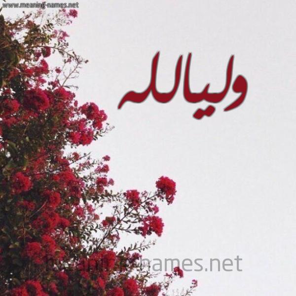 صورة اسم وليالله Wlyallh شكل 18 صوره الورد الأحمر للإسم بخط رقعة