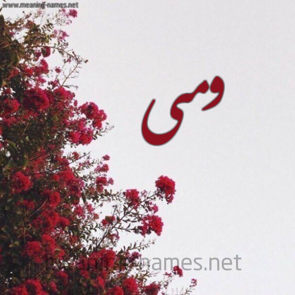 صورة اسم ومى Wma شكل 18 صوره الورد الأحمر للإسم بخط رقعة