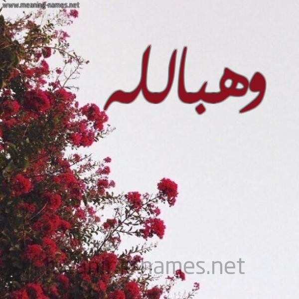 صورة اسم وهبالله Whballh شكل 18 صوره الورد الأحمر للإسم بخط رقعة