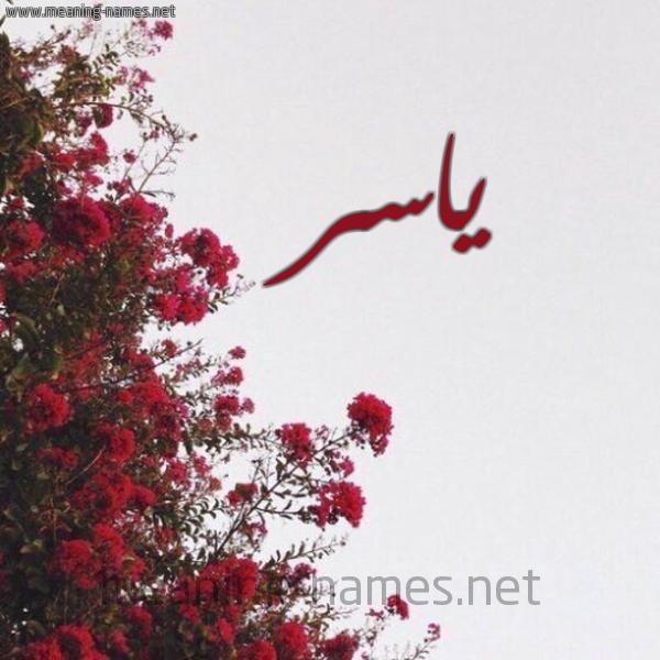 صورة اسم ياسر Yaser شكل 18 صوره الورد الأحمر للإسم بخط رقعة