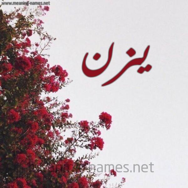 صورة اسم يزن Yazn شكل 18 صوره الورد الأحمر للإسم بخط رقعة