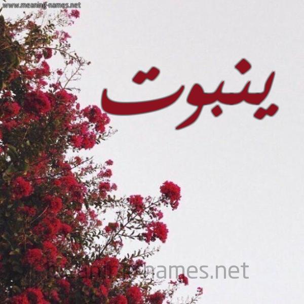 صورة اسم ينبوت Ynbwt شكل 18 صوره الورد الأحمر للإسم بخط رقعة