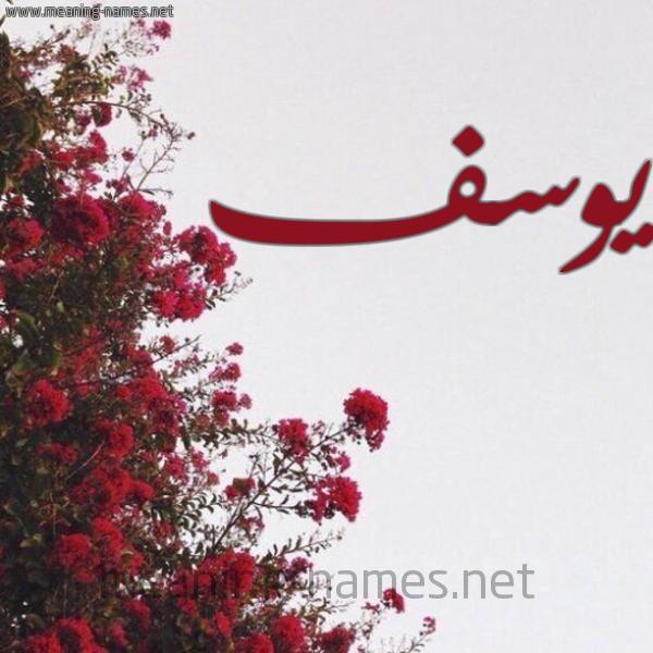 صورة اسم يوسف Yousef شكل 18 صوره الورد الأحمر للإسم بخط رقعة