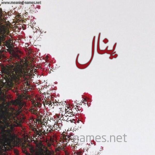 شكل 18 صوره الورد الأحمر للإسم بخط رقعة صورة اسم يَنال Yanal