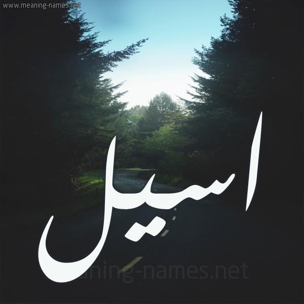 شكل 19 صوره طريق بين الشجر بخط رقعة صورة اسم اسيل Aseel