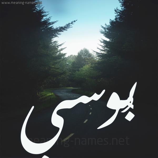 شكل 19 صوره طريق بين الشجر بخط رقعة صورة اسم بُوسي BOOSI