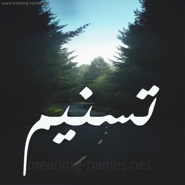 شكل 19 صوره طريق بين الشجر بخط رقعة صورة اسم تسنيم Tsnym