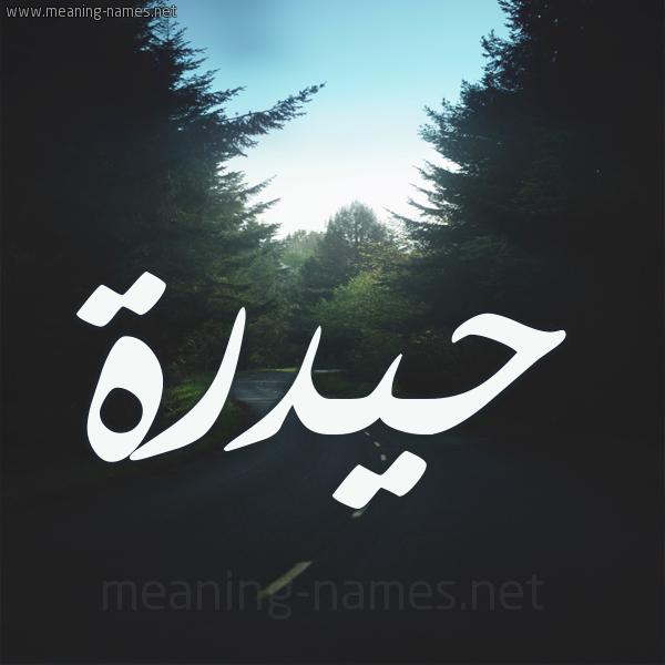 شكل 19 صوره طريق بين الشجر بخط رقعة صورة اسم حيدرة Hidar