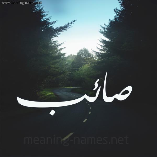شكل 19 صوره طريق بين الشجر بخط رقعة صورة اسم صائب SAEB