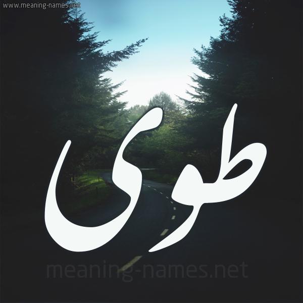 صورة اسم طوى Twa شكل 19 صوره طريق بين الشجر بخط رقعة