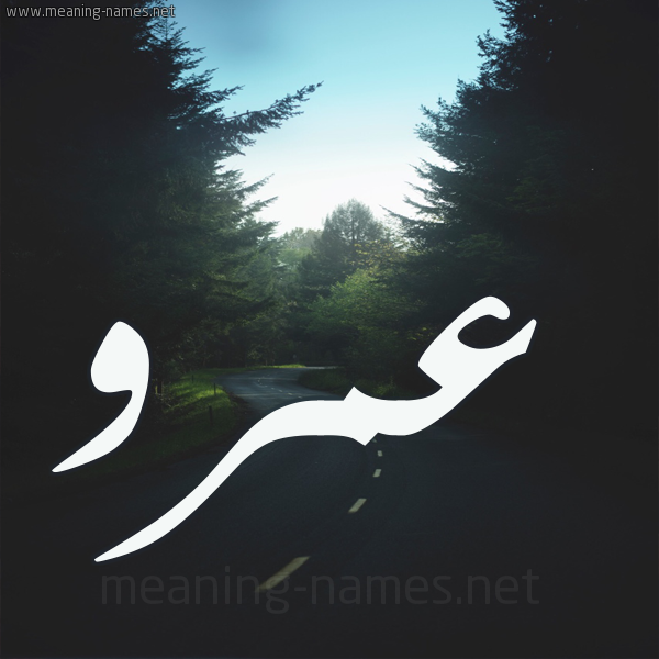 كل زخرفة وحروف عمرو زخرفة أسماء كول
