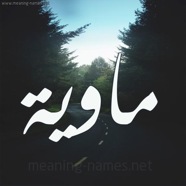 شكل 19 صوره طريق بين الشجر بخط رقعة صورة اسم ماوية Mawyh