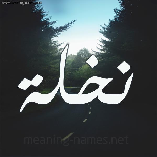شكل 19 صوره طريق بين الشجر بخط رقعة صورة اسم نخلة Nkhlh