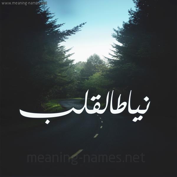 صورة اسم نياطالقلب Nyatalqlb شكل 19 صوره طريق بين الشجر بخط رقعة