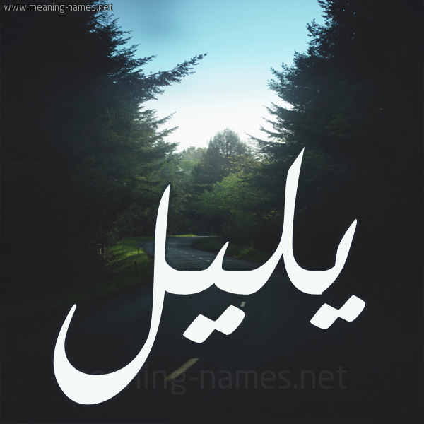 صورة اسم يليل Ylyl شكل 19 صوره طريق بين الشجر بخط رقعة
