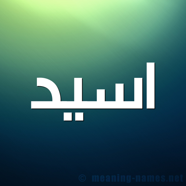 صورة اسم اسيد Asid شكل 1 صوره للإسم بخط عريض