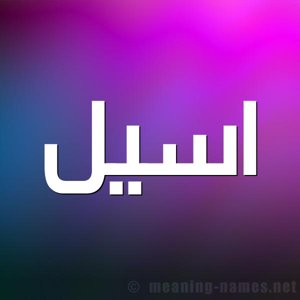 صورة اسم اسيل Aseel شكل 1 صوره للإسم بخط عريض