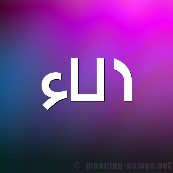 صورة اسم الاء Alaa شكل 1 صوره للإسم بخط عريض