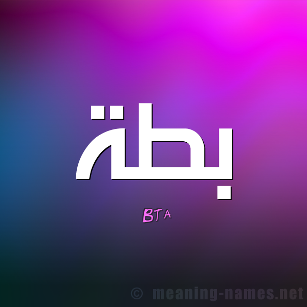 معنى اسم بطة Bta قاموس الأسماء و المعاني