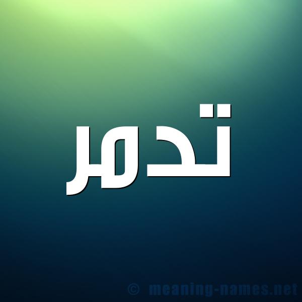 صورة اسم تدمر TDMR شكل 1 صوره للإسم بخط عريض