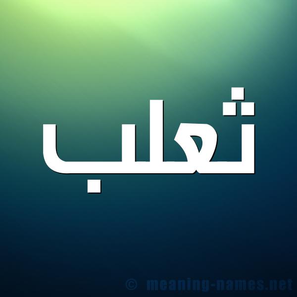 شكل 1 صوره للإسم بخط عريض صورة اسم ثعلب THALB