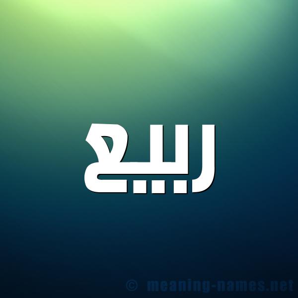 صورة اسم ربيع Rabea شكل 1 صوره للإسم بخط عريض