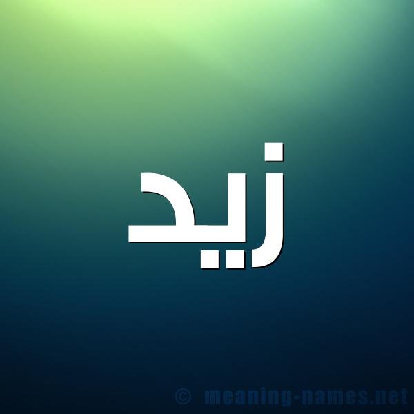 صورة اسم زيد Zyd شكل 1 صوره للإسم بخط عريض