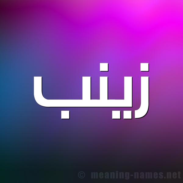 صورة اسم زينب Zaynab شكل 1 صوره للإسم بخط عريض