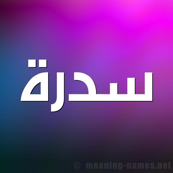 صورة اسم سدرة Sdrh شكل 1 صوره للإسم بخط عريض