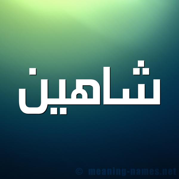 صورة اسم شاهين Shahyn شكل 1 صوره للإسم بخط عريض