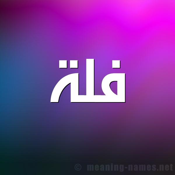 شكل 1 صوره للإسم بخط عريض صورة اسم فُلَّة FOLAH