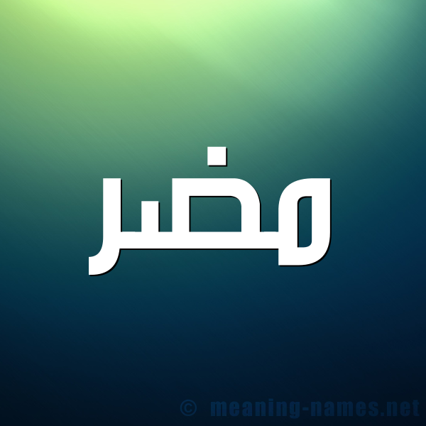 صورة اسم مضر Mdr شكل 1 صوره للإسم بخط عريض