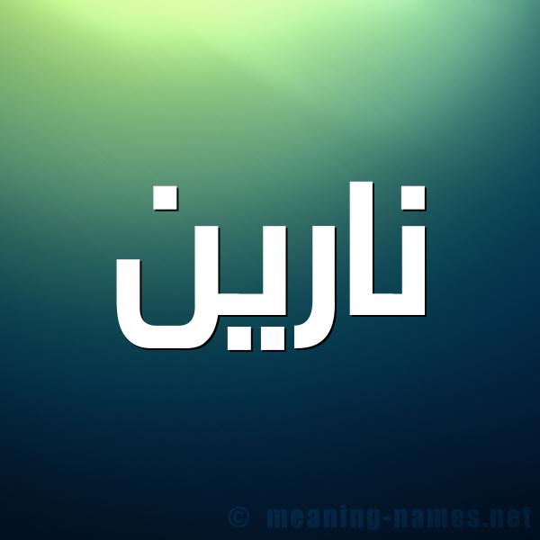 صورة اسم نارين Narin شكل 1 صوره للإسم بخط عريض