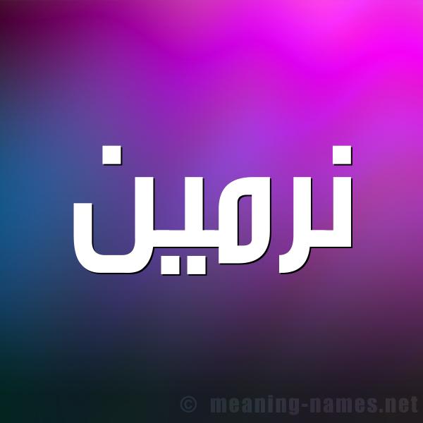 صورة اسم نرمين Nrmeen شكل 1 صوره للإسم بخط عريض