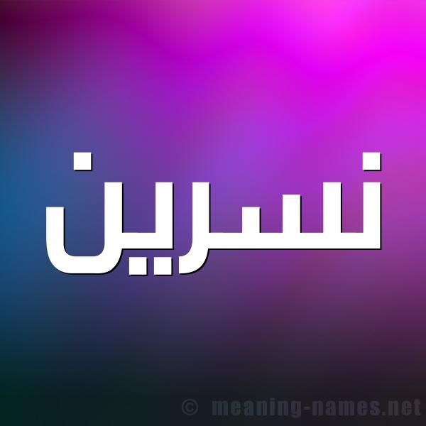 صورة اسم نسرين Nsryn شكل 1 صوره للإسم بخط عريض