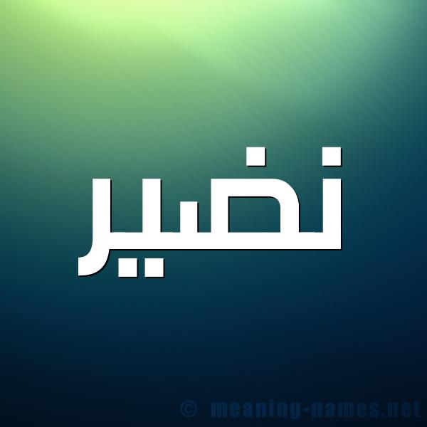 شكل 1 صوره للإسم بخط عريض صورة اسم نَضير NADIR