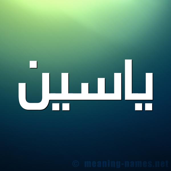 صورة اسم ياسين Yaseen شكل 1 صوره للإسم بخط عريض