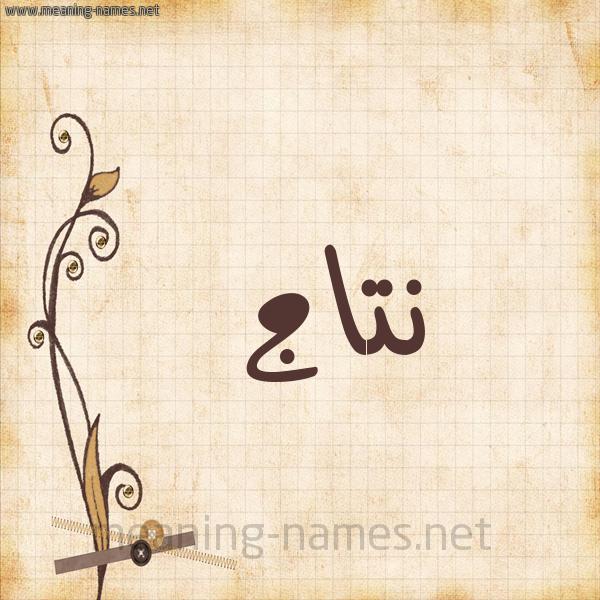 شكل 6 صوره ورق كلاسيكي للإسم بخط عريض صورة اسم نتاج Ntaj