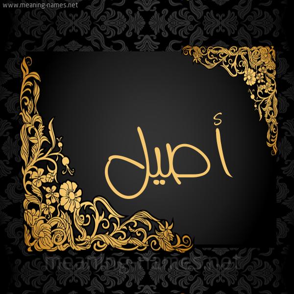 صورة اسم أصيل Aseel شكل 7 صوره اطار ذهبي مزخرف للإسم بخط عريض